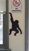 another monkey silhouette